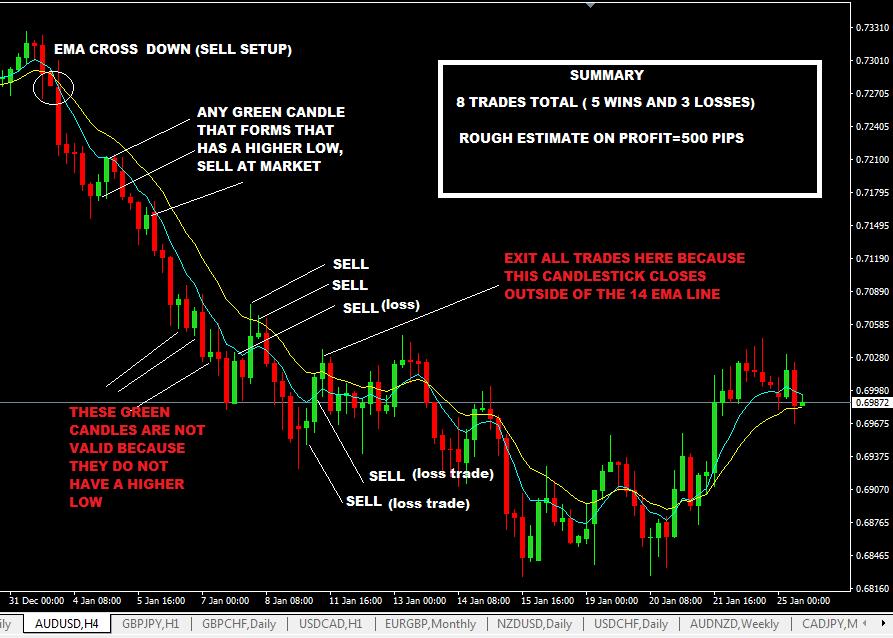 zorro trader krypto fx trader rates jamaica